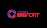 Bigfort